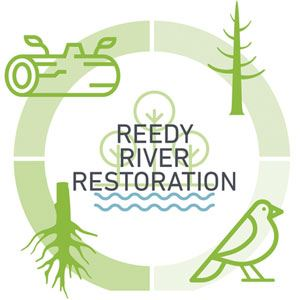 Circular graphic showing elements of river restoration, including downed trees, wildlife and plants